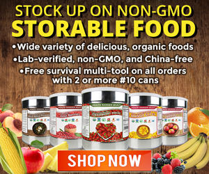 Survival Foods None GMO Best Deals